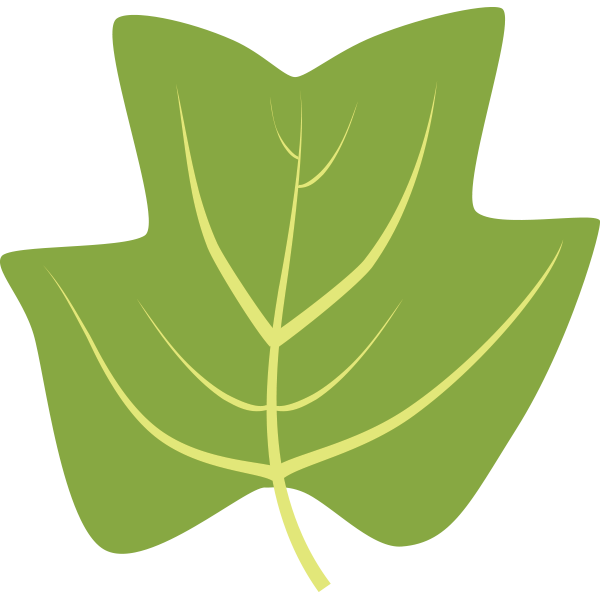 Clipart leaf hickory, Clipart leaf hickory Transparent FREE.