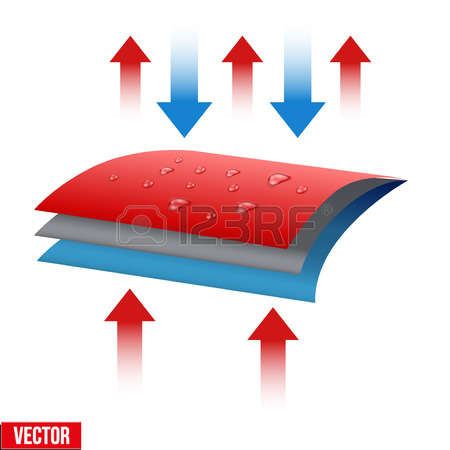 Water Absorption Cliparts, Stock Vector And Royalty Free Water.