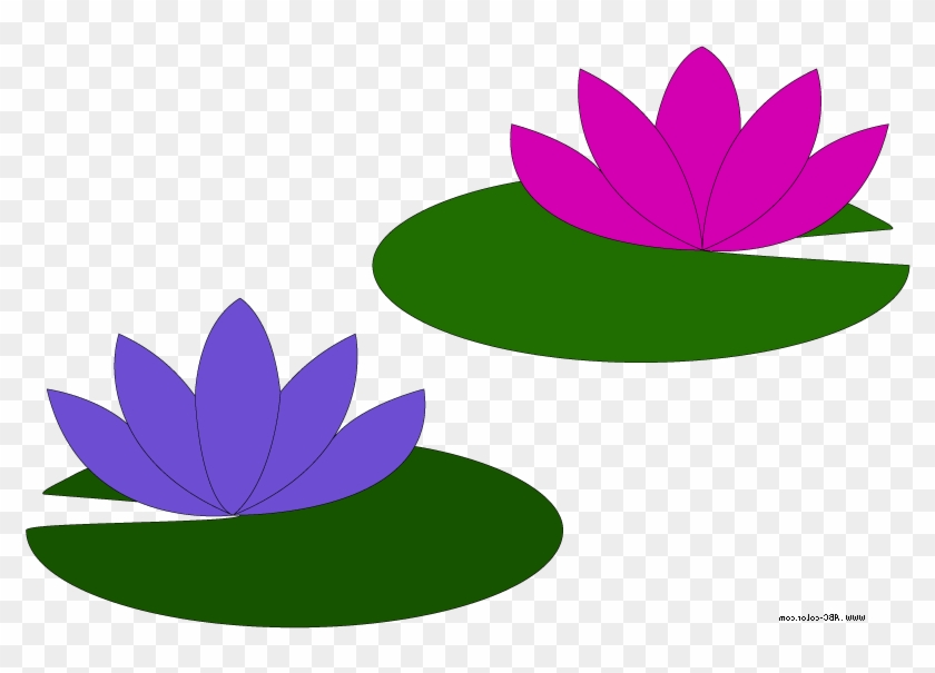 Go Back Gallery For Lily Pad Flower Clipart.