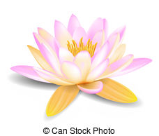 Lily Stock Illustrations. 15,343 Lily clip art images and royalty.