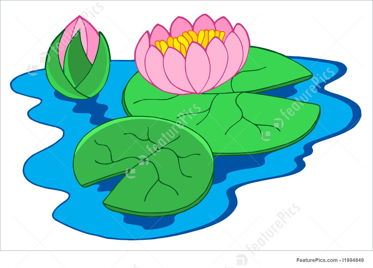 Showing post & media for Cartoon pink lilies.