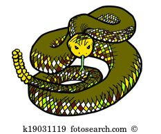 Water moccasin Clip Art and Illustration. 2 water moccasin clipart.