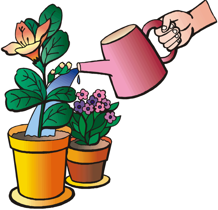 Water plant clipart - Clipground