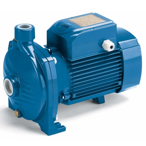 Pedrollo Water Pump.