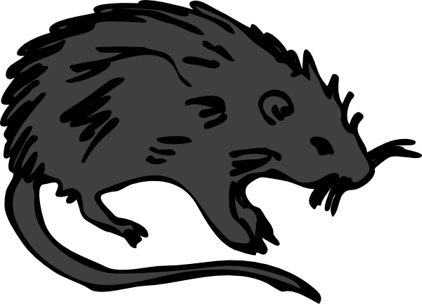 Black Rat Clip Art at Clker.com.