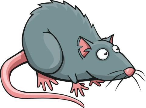 Showing post & media for Water rat cartoon.