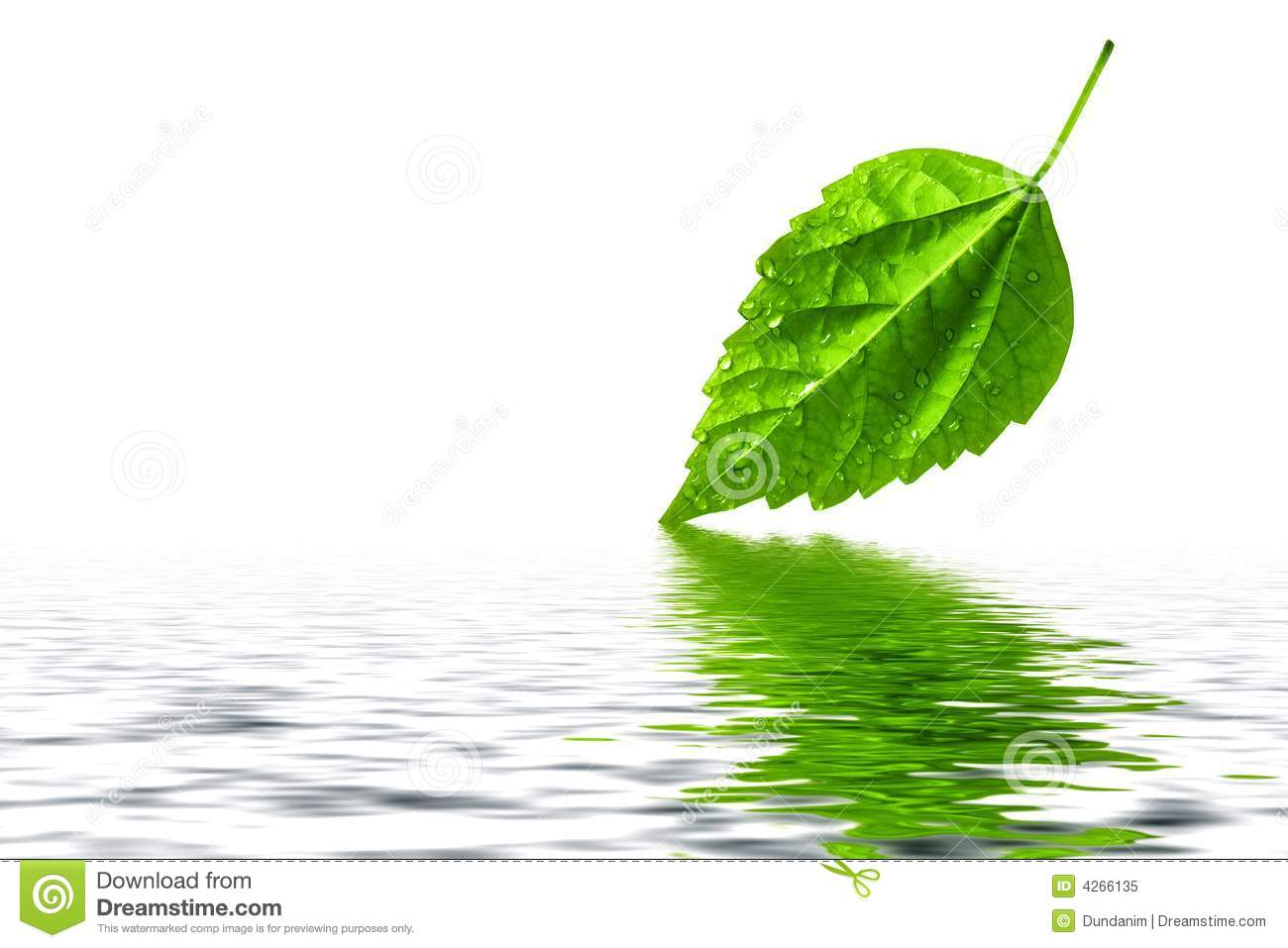 Water reflection clipart #12