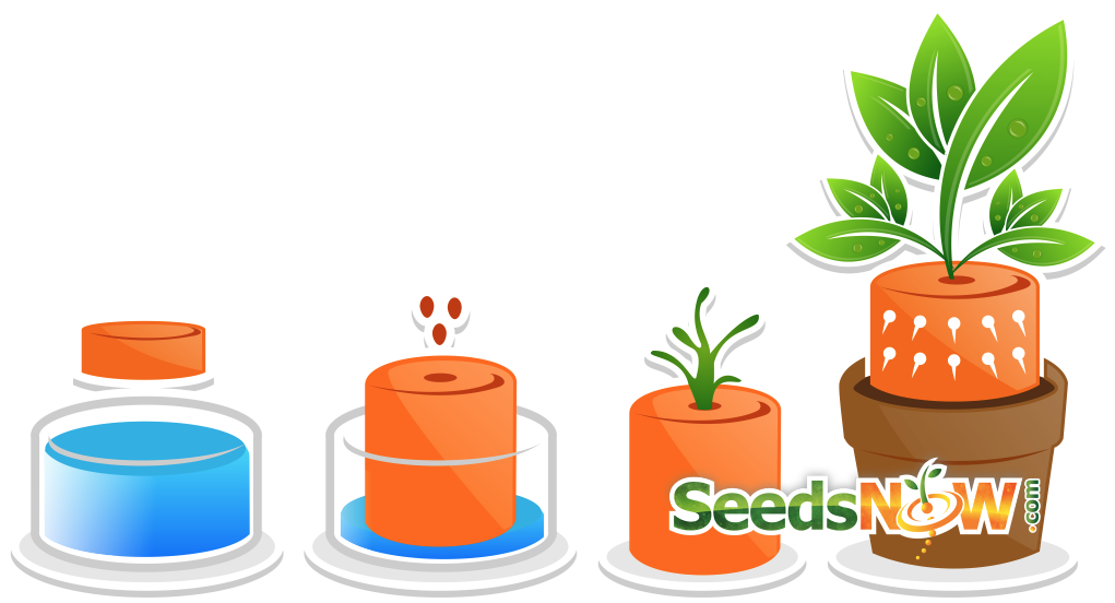 How to use Expanding Seed Starting Soil Pellets and Pods.