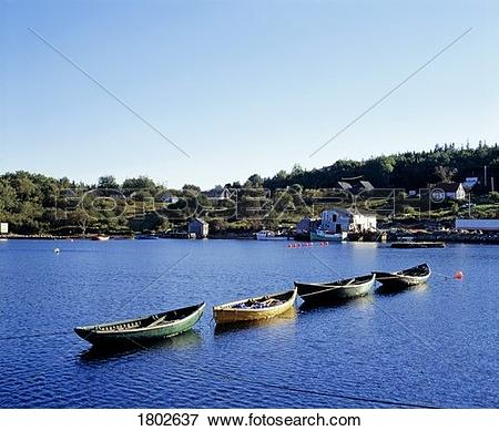 Picture of Four canoes lined up in the water close to shoreline.