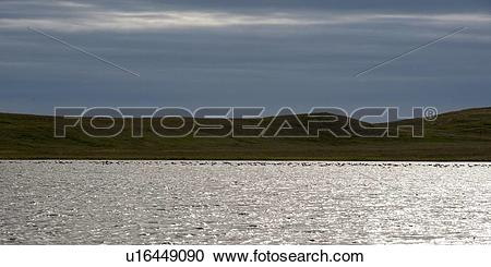 Stock Photography of Shimmering water along the hilly shoreline.