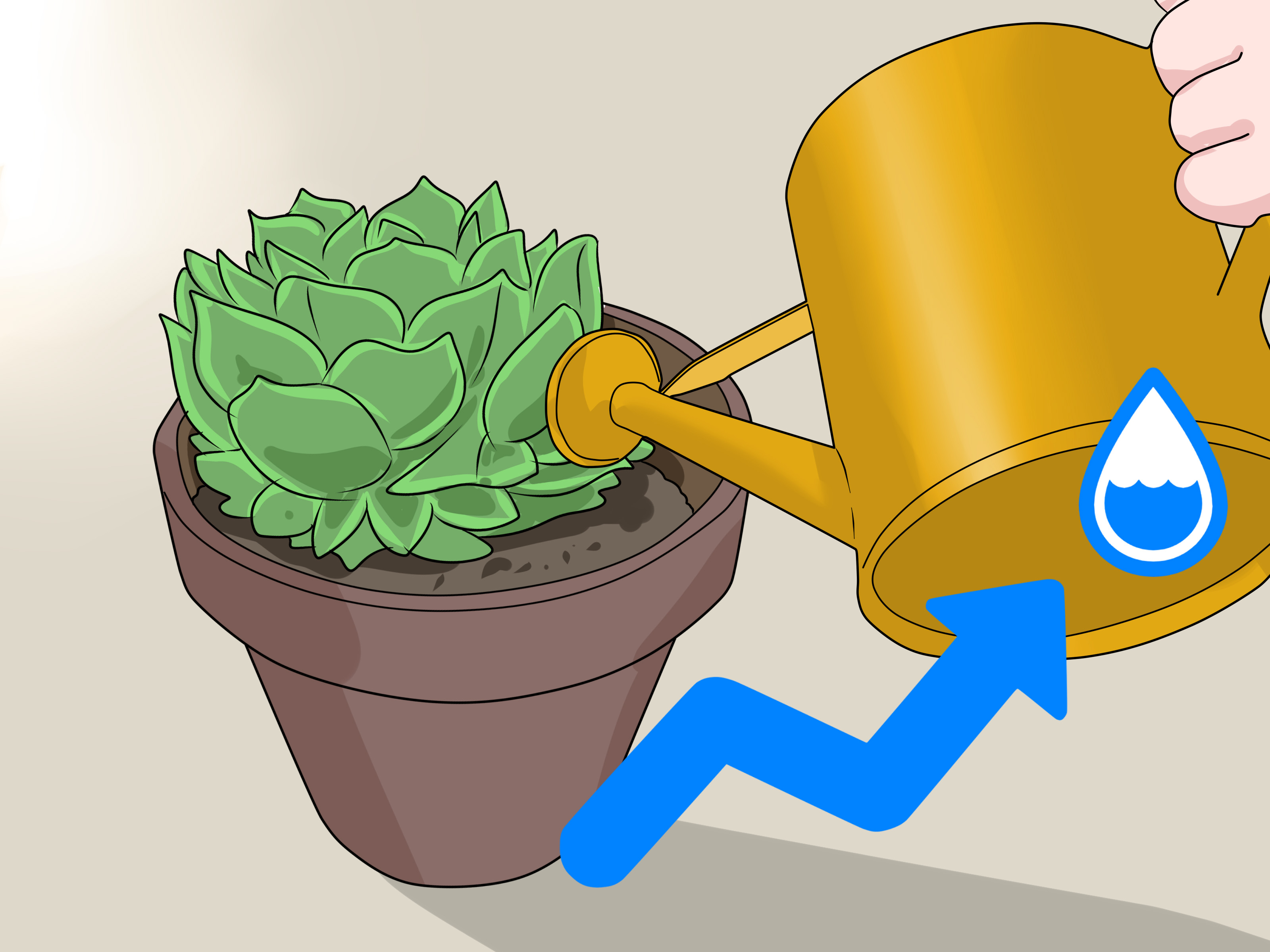 Plants Need Water Clipart.