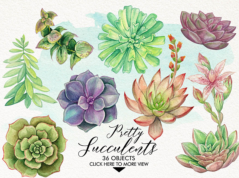 Watercolor Pretty Succulents by GRAPHOBIA on Dribbble.