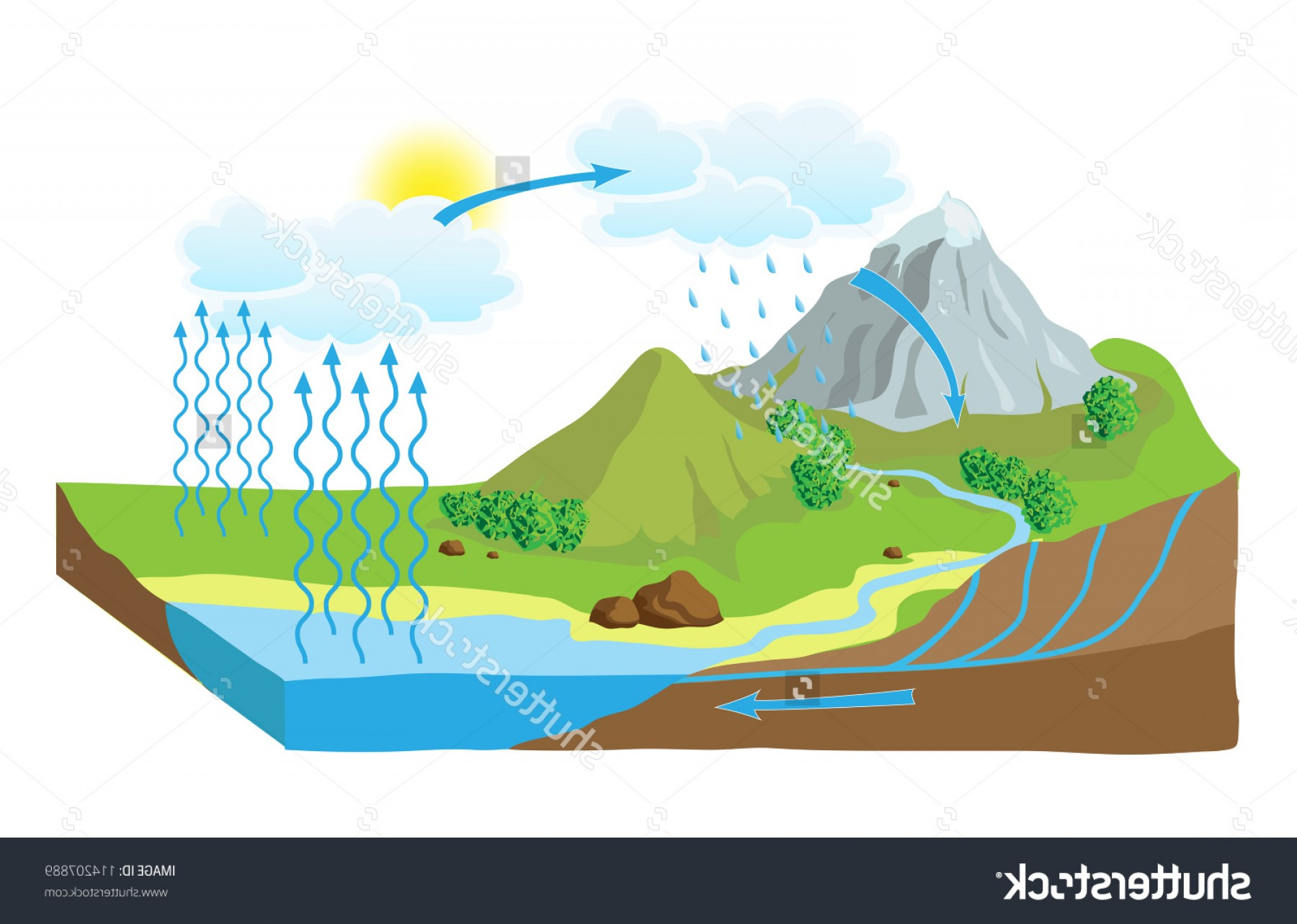 Hd Stock Vector Hydro Or H O Transformation Chart Map.