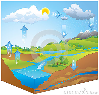 Water Cycle Nature Diagram Stock Photos, Images, & Pictures.