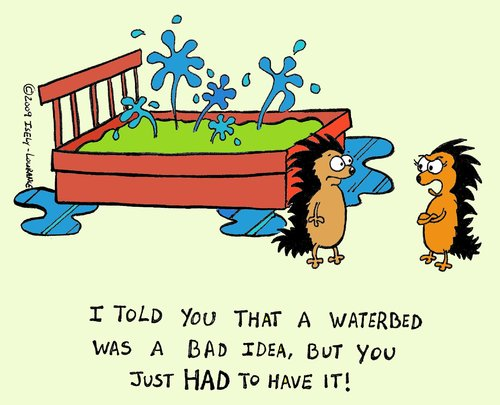 Showing post & media for Water bed cartoon.