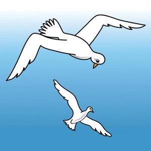 Seagulls Clipart Image.