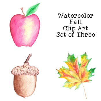 Autumn Fall Watercolor Clip Art PNG JPG Commercial or Personal Acorn Leaf  Apple.