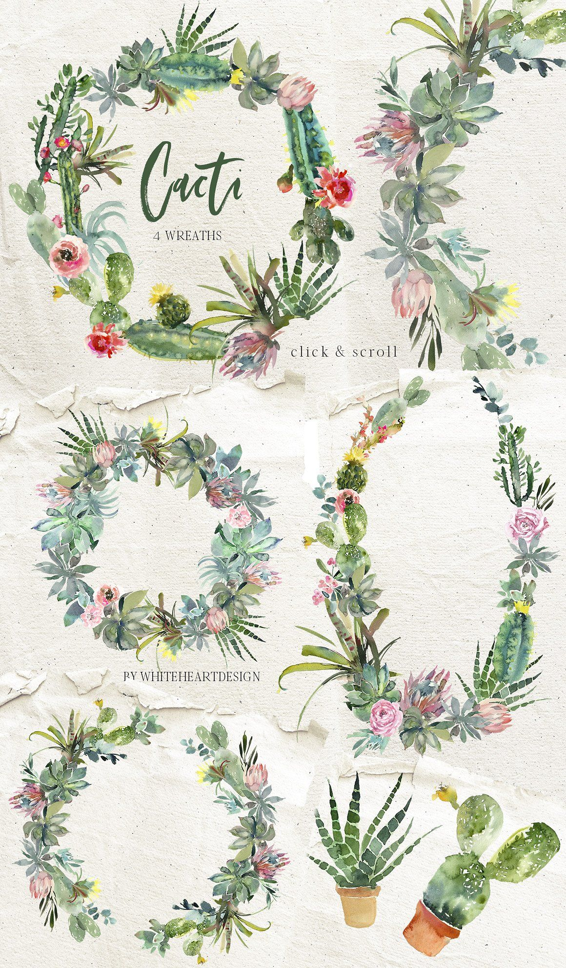 Cacti Watercolor Cactuses Clipart #ampersand#bouquets.