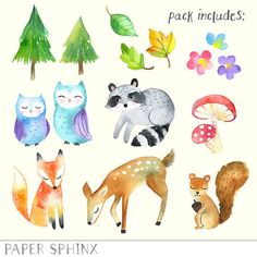 Woodland Friends 3. Watercolor animals clipart, fox, forest, deer.