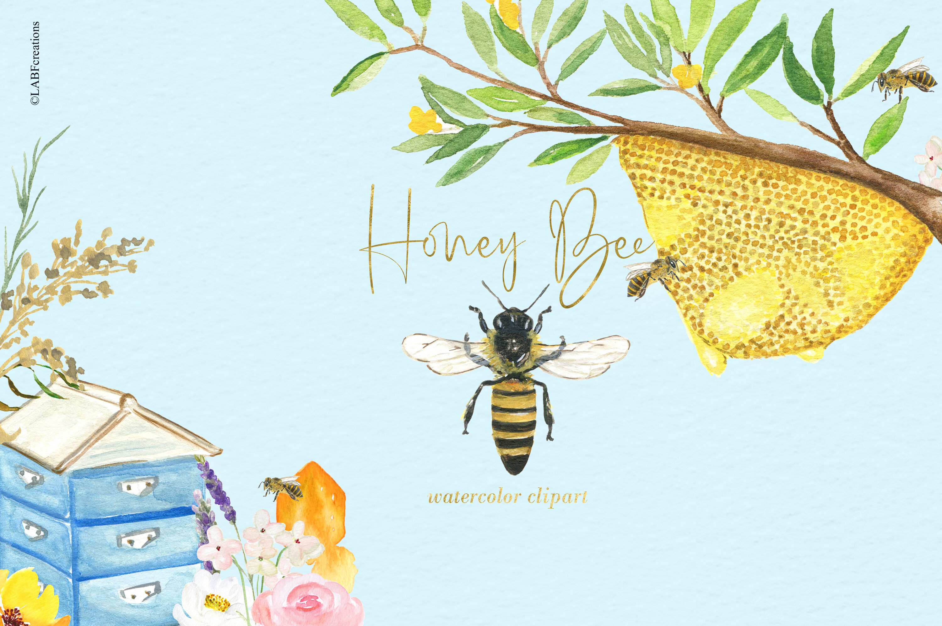 Watercolor Honey Bee Clipart. Honey combs and hives. By.