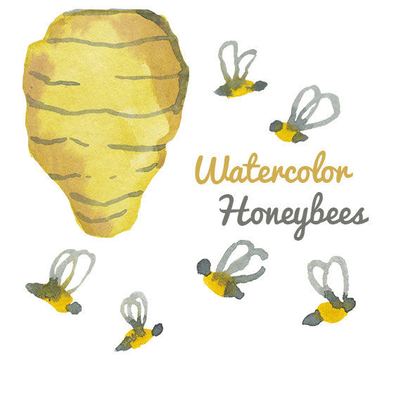Watercolor Honey Bee Clip Art Image Pack Bees Clipart Digital Do.