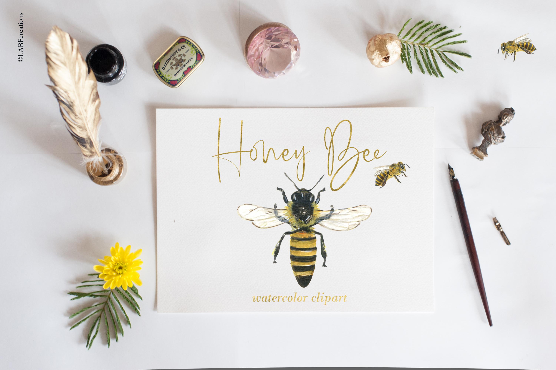 Honey bee. Watercolor clipart..
