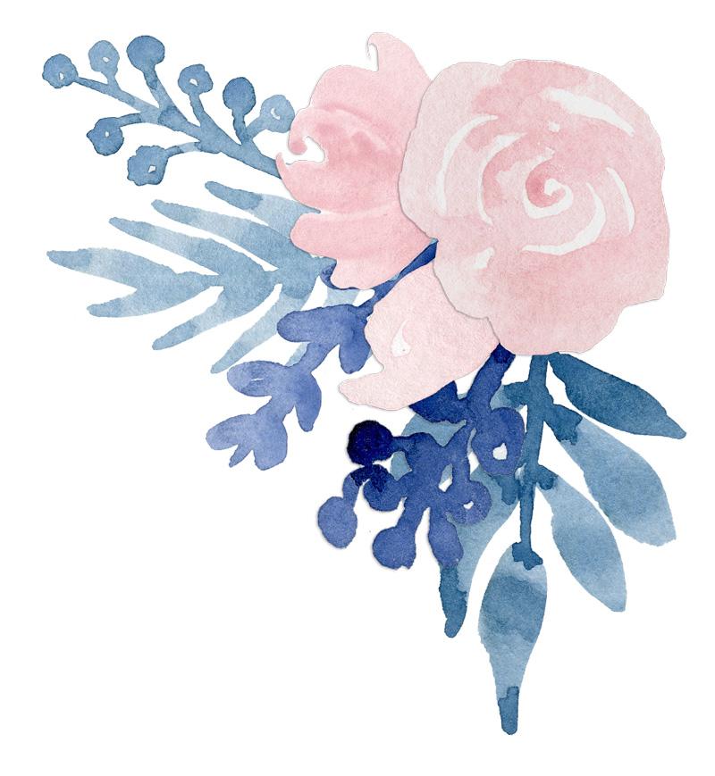 Watercolor Flower Navy Blue Blush Pink Floral Clip Art.