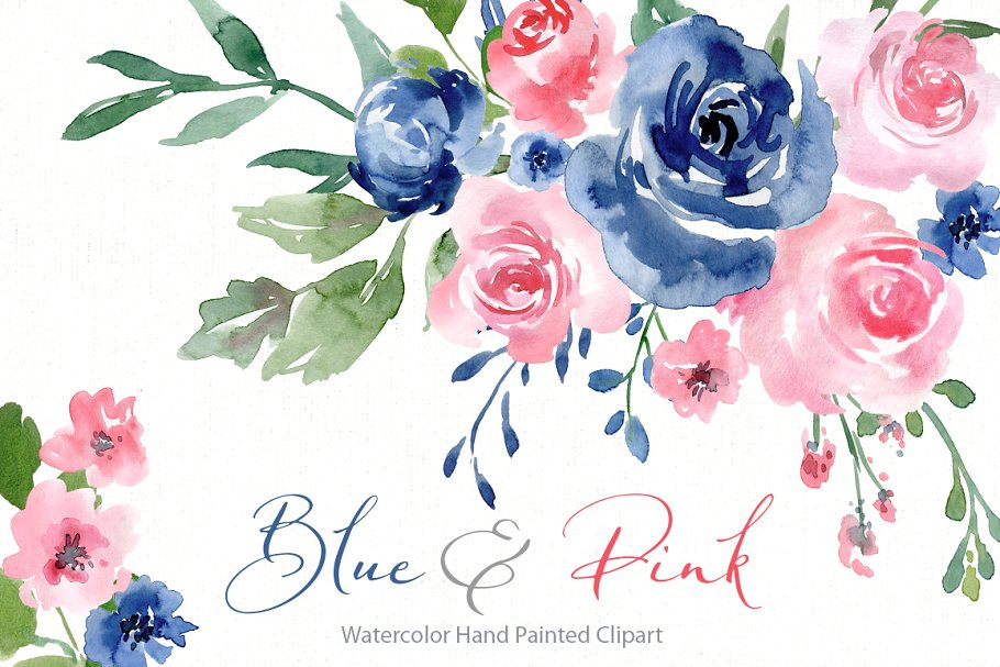 Watercolor Blue Pink Roses Flowers ~ Illustrations.