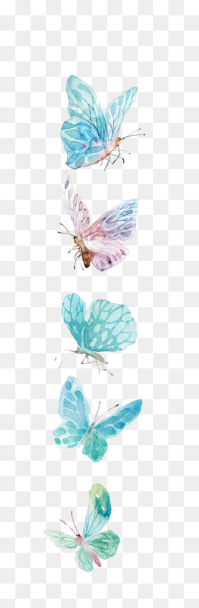 Butterfly PNG.