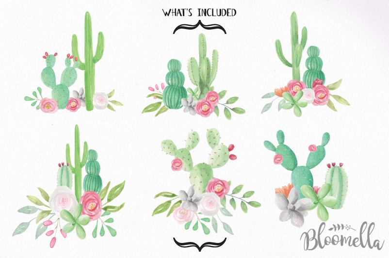 Watercolor Cactus Clipart Bouquets Arrangements Flowers.