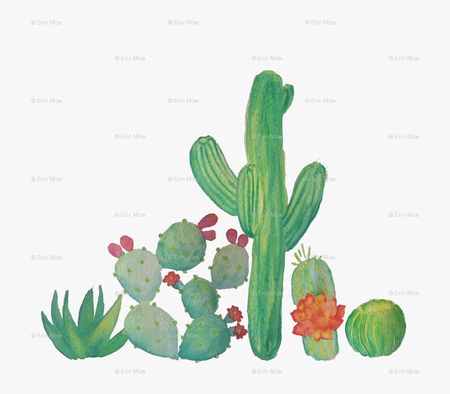 Banner Freeuse Download Watercolor Cactus Clipart.