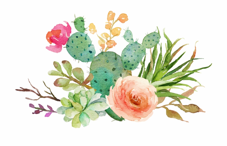 Download Free png Watercolor Cactus Flowers Cactus And.
