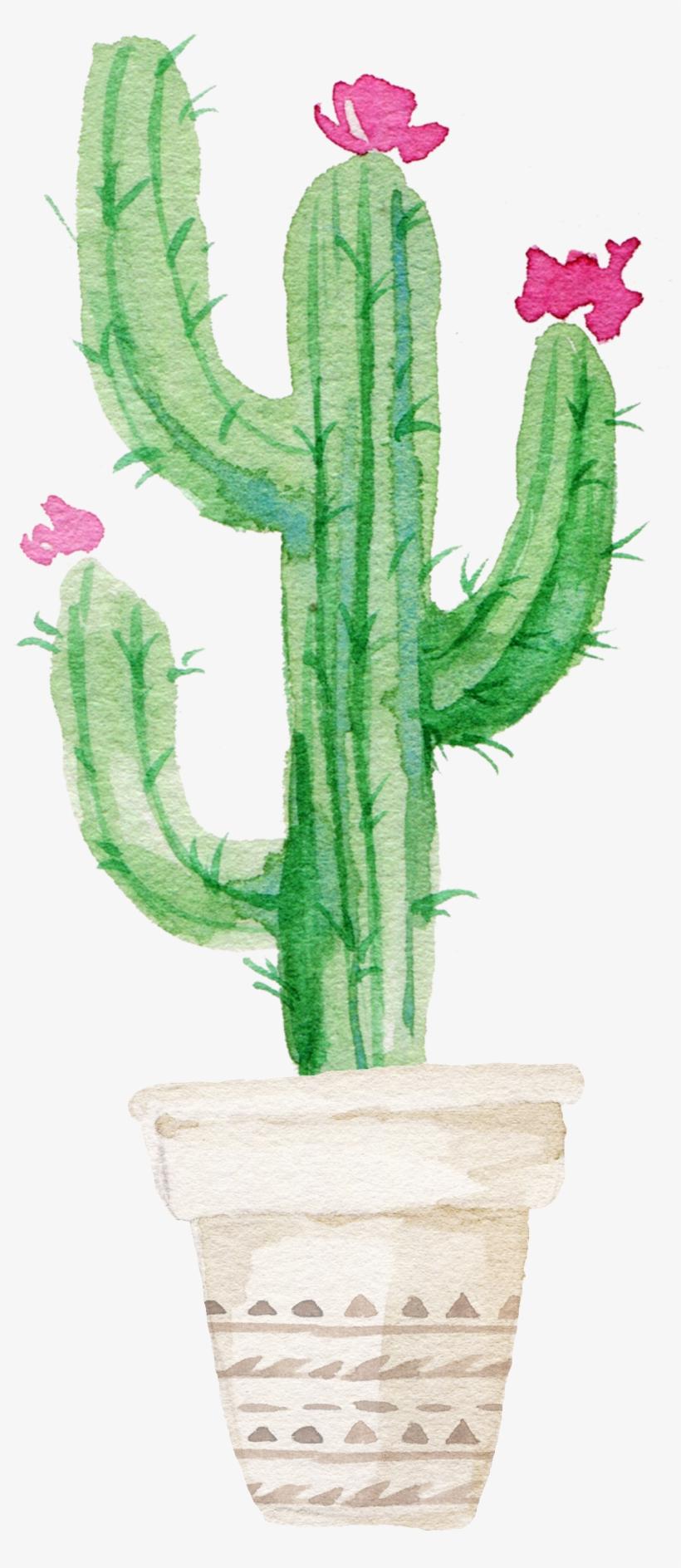 Succulent Plant Watercolor Painting.