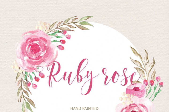 Watercolor Ruby rose clipart, watercolor flower, Pink Floral.