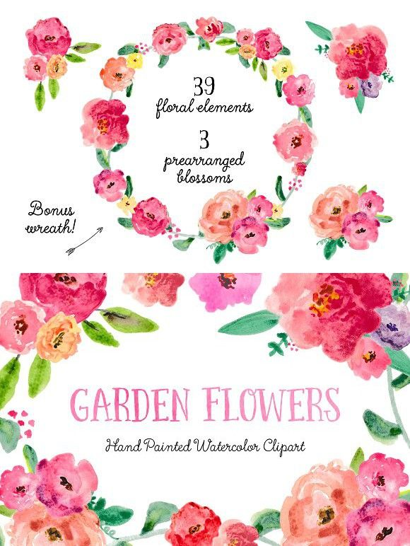 SALE! Garden Watercolor Clipart. Watercolor Flowers.