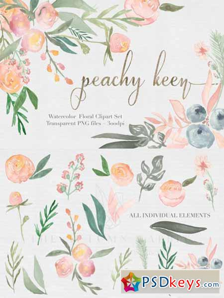 Peachy Keen Watercolor clipart Set 476836 » Free Download.