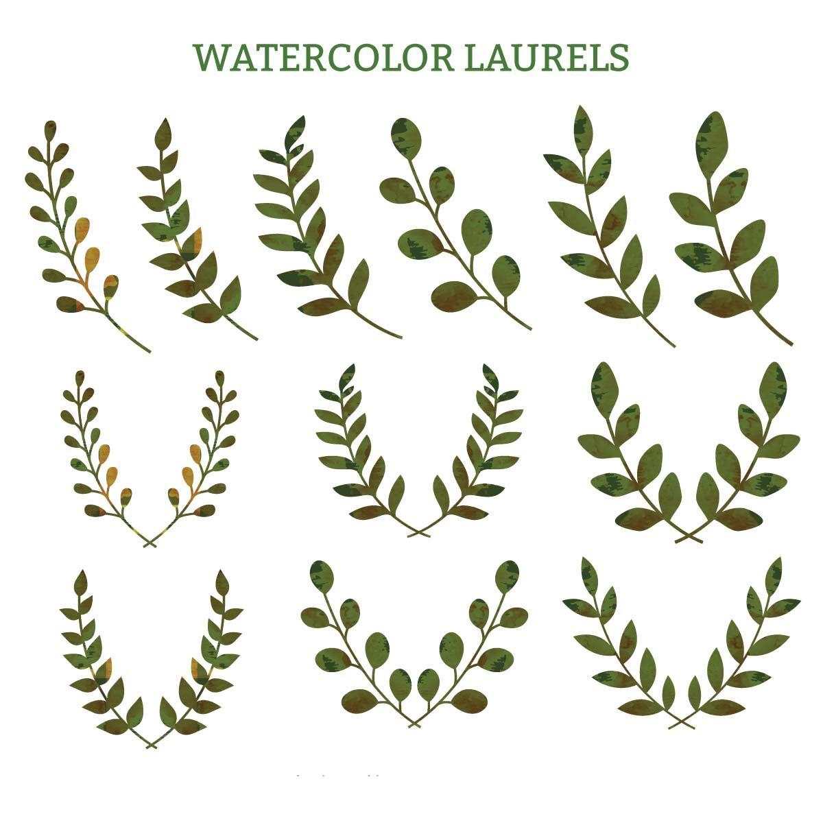 Watercolor laurels green decorative vector.
