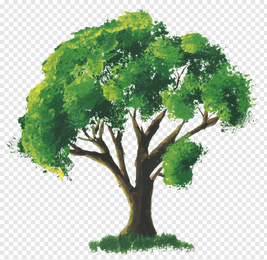 Green leafed tree with brown trunk painting, Watercolor.