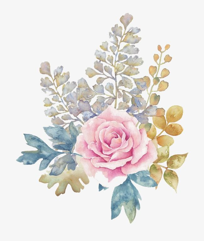 Watercolor Flowers, Watercolor Clipart, Pink Flowers.