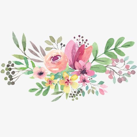 Flowers, Clipart, Hand Painted PNG Transparent Image and.