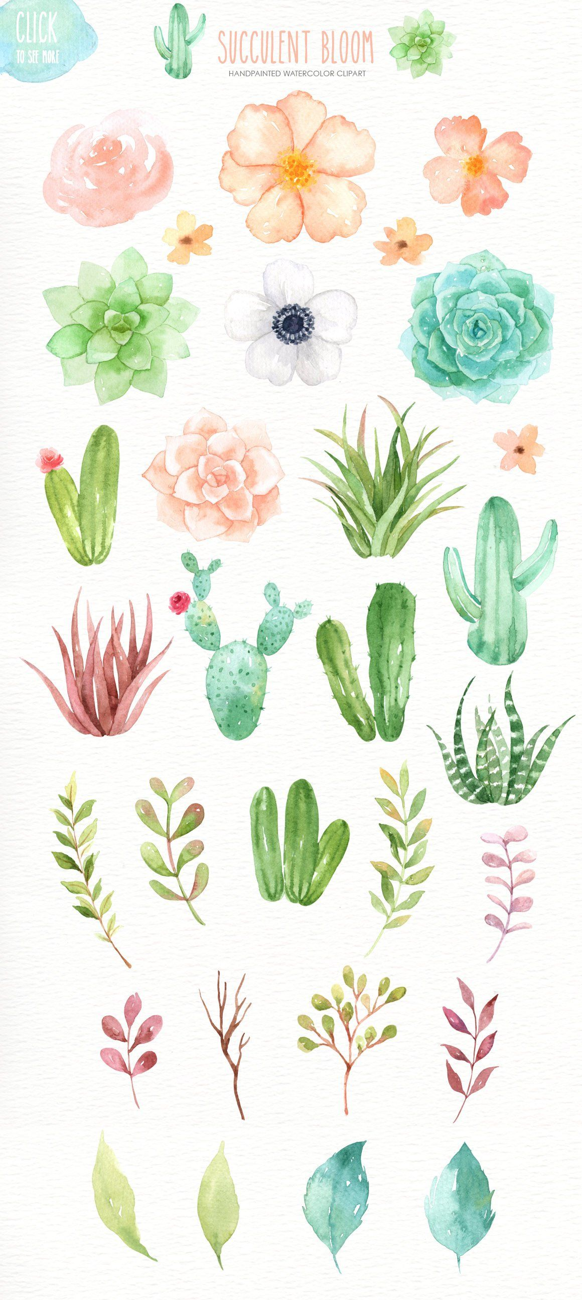 Succulent Bloom Watercolor Cliparts, Cactus, Flower Clipart.