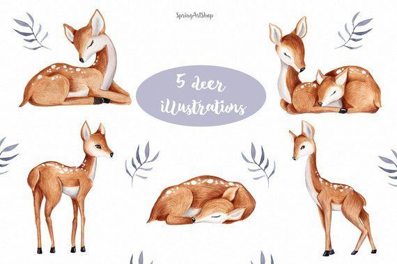 Cute baby Deer Watercolor clipart Spring flower clipart.