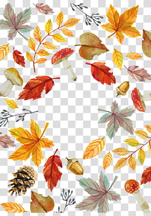 Fall Leaves transparent background PNG cliparts free.
