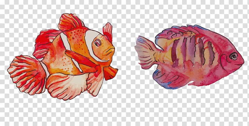 Watercolor painting Clownfish, Watercolor FISH painting.