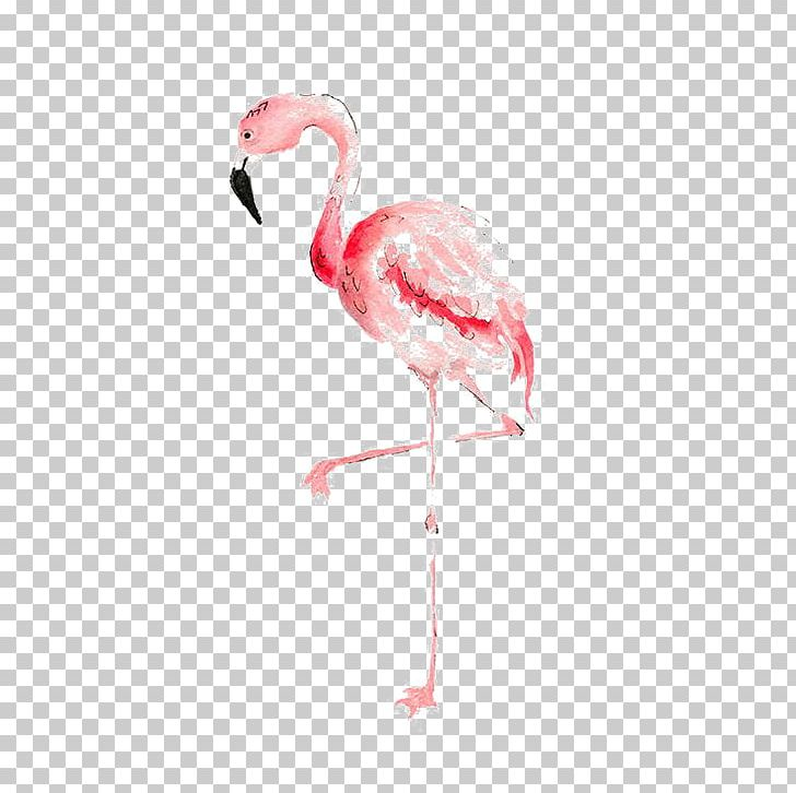 Flamingo Watercolor Painting Drawing PNG, Clipart, Animal.