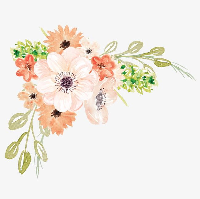 Watercolor Flowers PNG, Clipart, Cartoon, Flowers, Flowers.