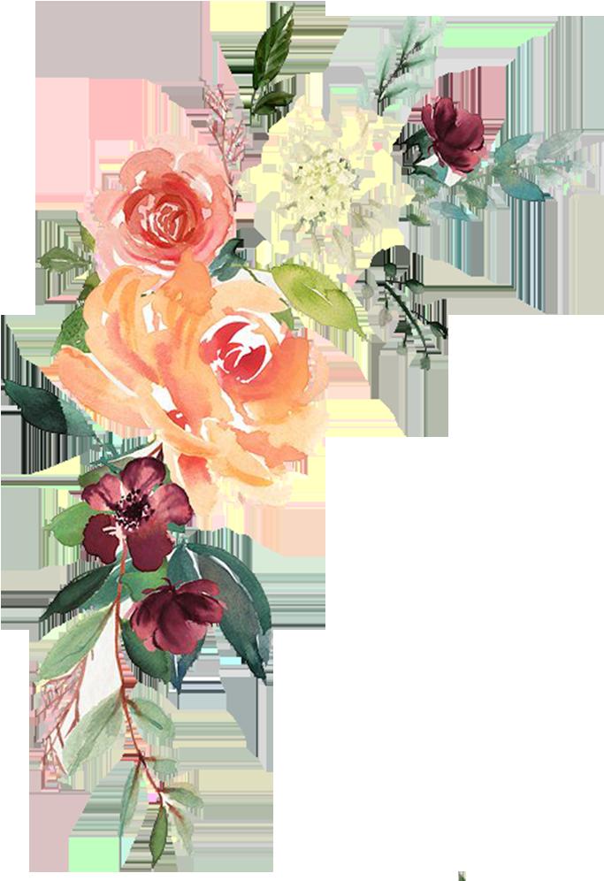 Watercolor Floral Transparent Png.