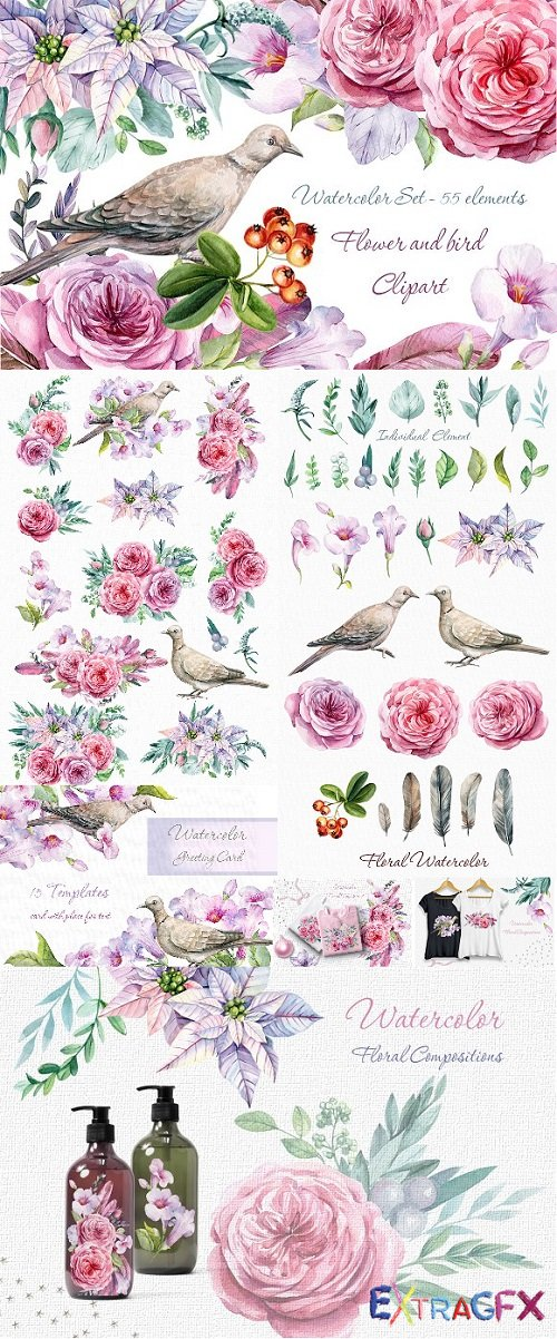 Flower and bird Clipart. Watercolor.