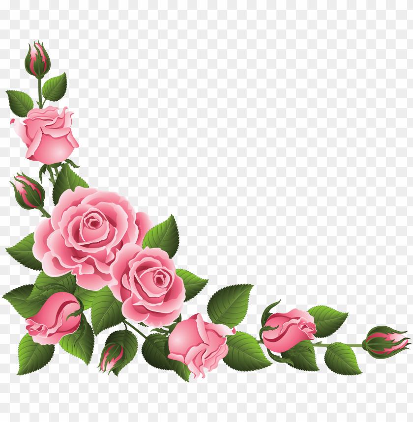 floral hand painted clip art, watercolor flower clipart.