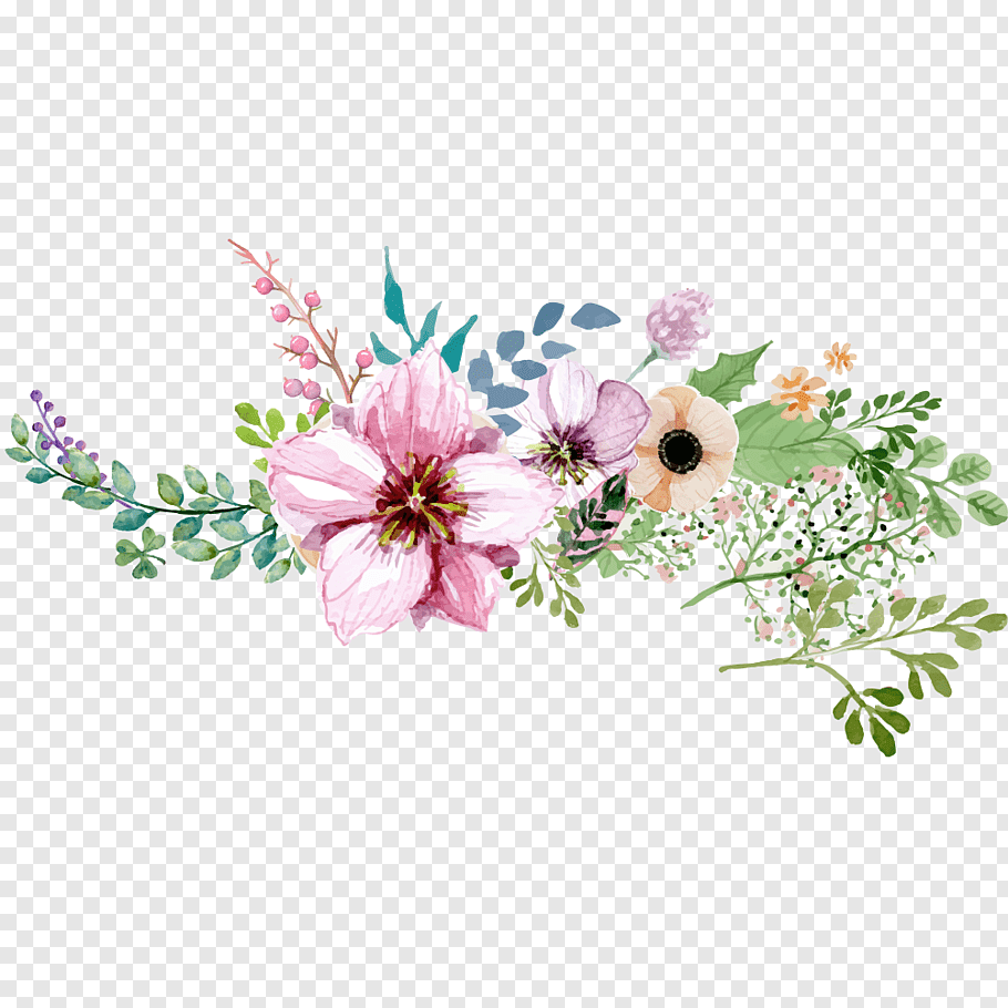 Flower, Hand painted watercolor flower decoration pattern.